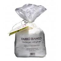 FARINA DI FARRO BIOLOGICO 1Kg - Mulino Marino