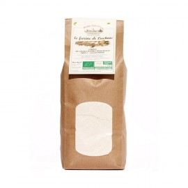 WHEAT FLOUR Type 2 organic