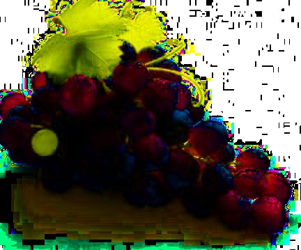 Dall'uva l'olio di vinacciolo