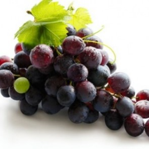 Italian Grape seed oil - The good taste of the squeezing technology